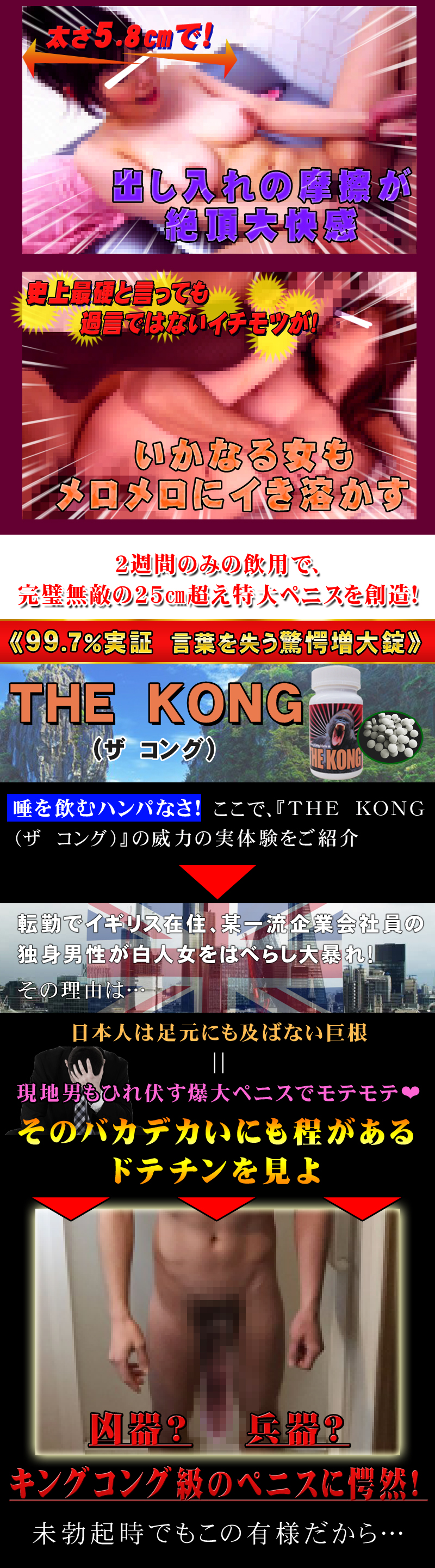 THE KONG(コング)
